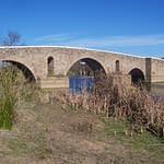 ponte monforte
